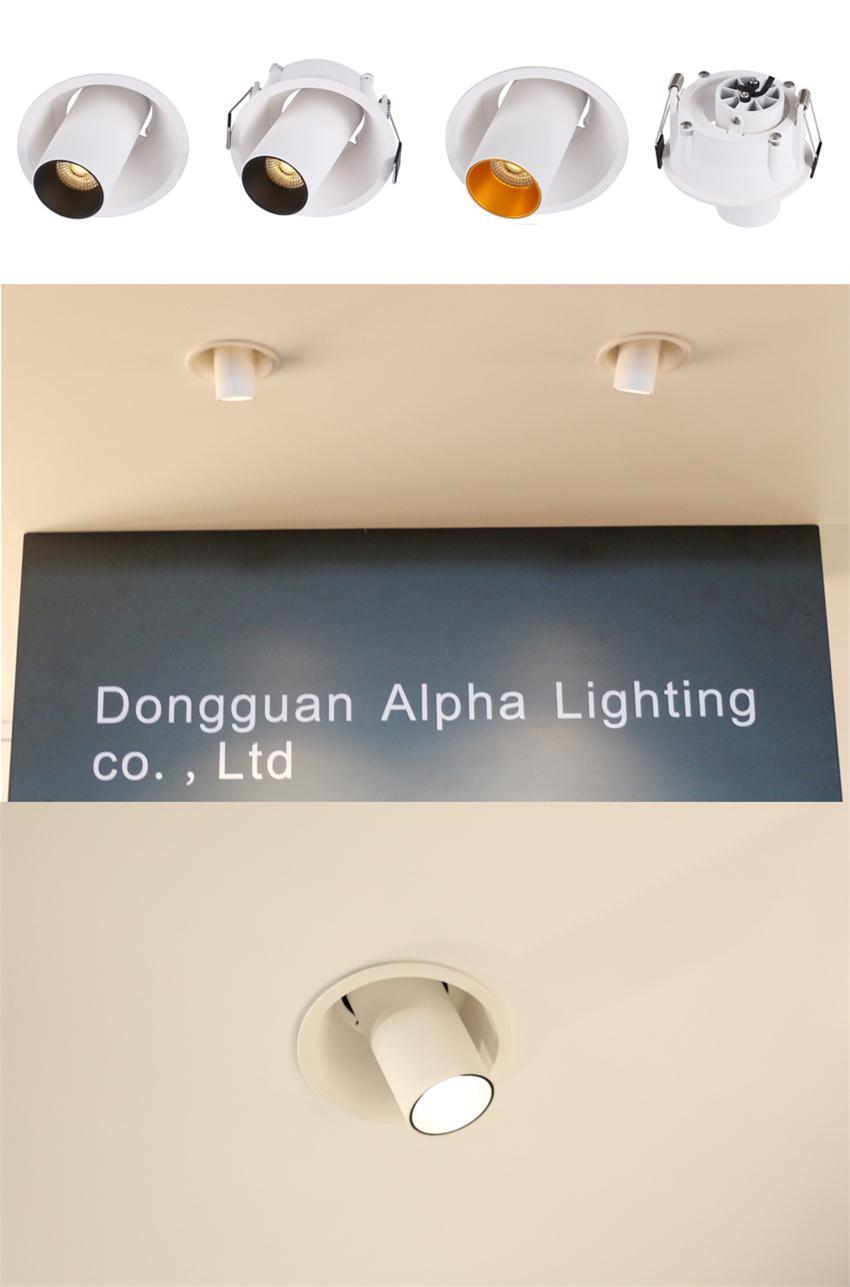 Adjustable downlight spot