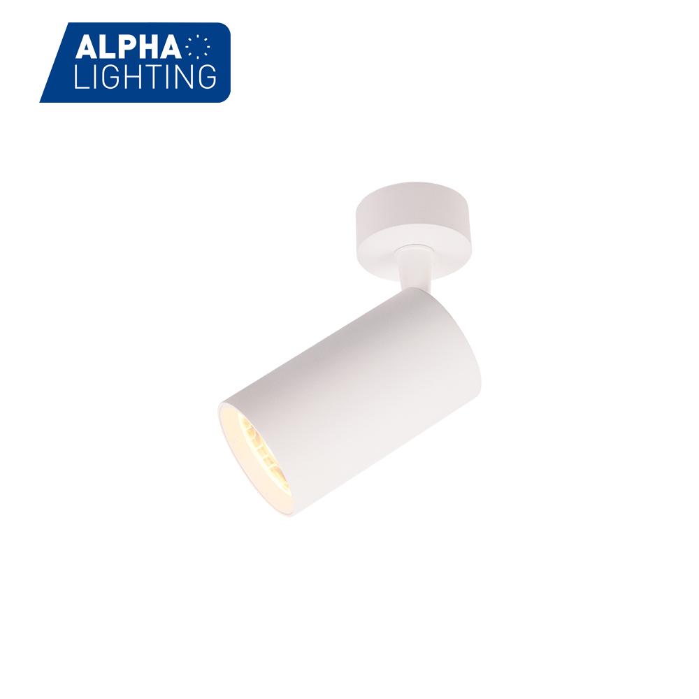 Universal Adjustable Luminaries Decoration Led Cob Lights