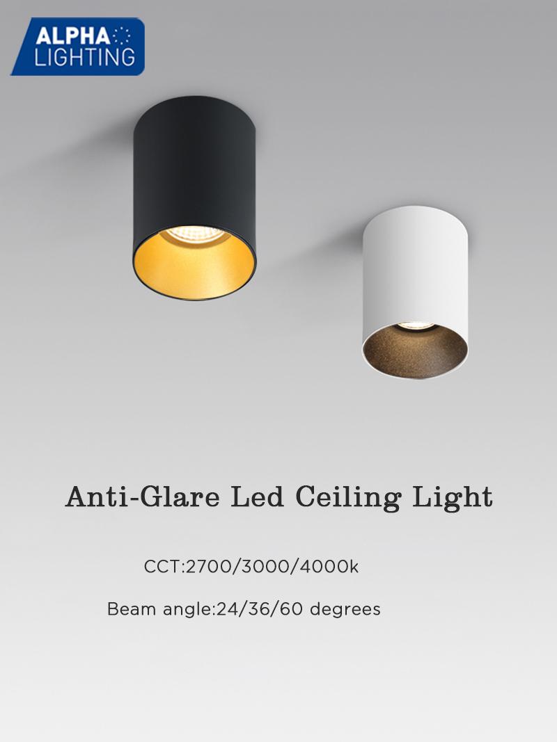Anti-glare IP20 Indoor High Lumen LED Ceiling Mounted Light